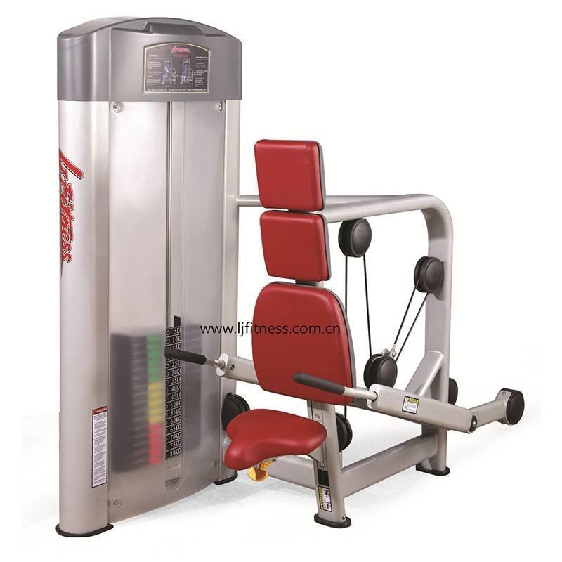 LJ-5503 (presse Triceps)