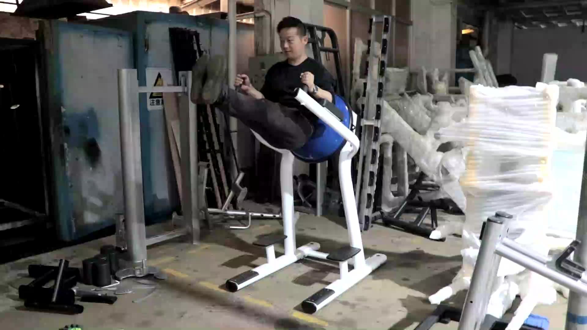 LJ-5132 Leg raise with bosu ball